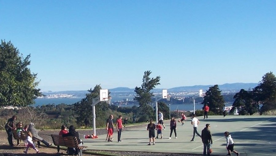 Want to play basket with the Tejo in sight? Go to Monsanto. It's free.